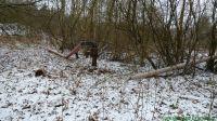 KurbahnBadBramstedt2013-02-24_5