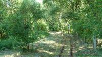 Kurbahn Bad Bramstedt - 2012-07-26 02