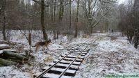 KurbahnBadBramstedt2012-12-22_1