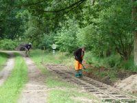 Kurbahn Bad Bramstedt - Gleispflege 2012-07-14 06