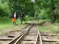 Kurbahn Bad Bramstedt - Gleispflege 2012-07-14 03