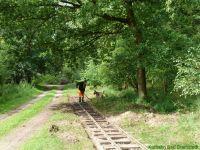 Kurbahn Bad Bramstedt - Gleispflege 2012-07-14 02