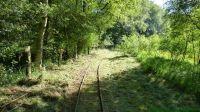 Kurbahn Bad Bramstedt - Maeharbeiten 2012-07-24 04